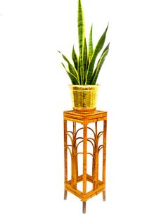 Vintage Tortoise Bamboo Plant Stand | Accent Table