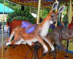 I want to ride on this kanga!