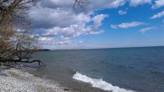 Photo of shoreline west of Whitby facing east.
