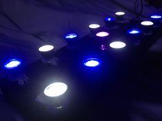 Luminária do Boyu TL550 totalmente acesa. Detalhe do led violeta no centro...