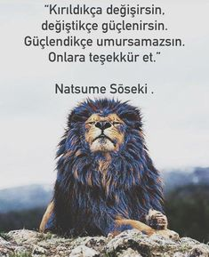 Wise Quotes, Book Quotes, Words Quotes, Success Quotes, Learn Turkish Language, Good Sentences, Love Illustration, Word Up, Meaning Of Life