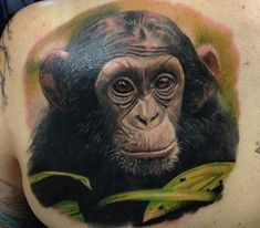 Nice realistic colorful chimpanzee head in tropics tattoo on beck