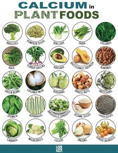 25 Calcium-Rich Plant Foods That DON'T Come From Dairy! 25 Calcium-Rich Plant Foods That DON'T Come From Dairy!)Nutrition & Physical astuces pour manger plus sain Sport Nutrition, Nutrition Sportive, Vegan Nutrition, Nutrition Plans, Health And Nutrition, Health Tips, Holistic Nutrition, Complete Nutrition, Nutrition Guide