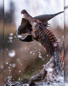 Photographer Patrik Röhr captures amazing shots of prehistoric animal toys, bringing them to life. Real Dinosaur, Dinosaur Photo, Dinosaur Art, Unique Gifts Family, Spinosaurus, Dinosaur Fossils, Jurassic Park World, Prehistoric Creatures, Dinosaurs