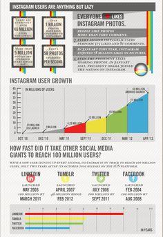 Instagram Infographics 2
