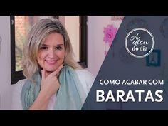 COMO ACABAR COM BARATAS | A DICA DO DIA COM FLÁVIA FERRARI - YouTube