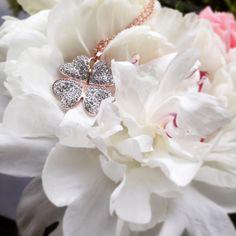 Glücksbringer - Rosévergoldetes Kleeblatt, das mit seiner Besitzerin um die Wette strahlen kann! http://www.amyzoey.de/kette-mit-kleeblattanhaenger-rosevergoldet-1649.html #Kleeblatt #Amyzoey #Schmuck #Fashion #Jewelry