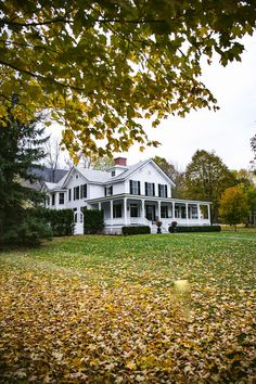 Ever wanted to see foliage in Vermont? Check out my quick guide for the best time to experience the best fall foliage and fun things to do while you are here. Autumnal, Vermont, Things To Do, Mansions, House Styles, Fall, Check, Things To Make, Autumn