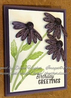 DH plum coneflower by diane617 - Cards and Paper Crafts at Splitcoaststampers