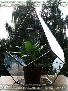 KAGADATO. Florarium - DODECAHEDRON [extended]. The multi-faceted form. Made by Tiffany technology. Clear glass. It consists of many parts. The metal compound glass. It can be used as a lamp or a vase for flowers.