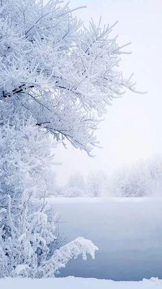 #snow 🌬❄️