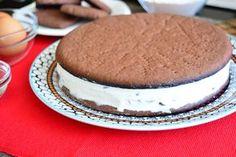 la torta gelato cookies Bimby