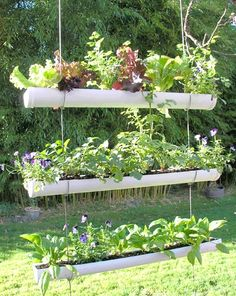 Hanging Herb Garden Ideas for Your Home | ~Hanging Herb Garden Ideas on
