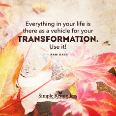 Everything in your life is there as a vehicle for your transformation. -Ram Dass - Life transformation, inspiration, growth, and motivational quotes Ram Dass, Amazing Quotes, Great Quotes, Inspirational Quotes, Motivational Quotes, Yoga Quotes, Daily Quotes, Spiritual Growth, Spiritual Quotes