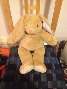 FOUND ON TRAIN UK (EASTBOURNE STATION)  this cuddly build-a-bear bunny was Found at Eastbourne train station and handed in to the station there via https://twitter.com/tomfoy86