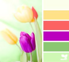 spring brights color palette from Design Seeds Colour Pallette, Color Palate, Colour Schemes, Color Combos, Color Patterns, Colours That Go Together, Design Seeds, Color Swatches, Color Stories