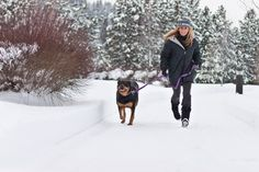Baby it's cold outside. We do offer daily dog walks no matter what the temp is outside. Give us a call or email us. Feel free to check out our website to learn more about our dog walking services. http://roundlake.snagglefoot.com/