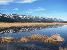 Blue Mountains. Oregon.