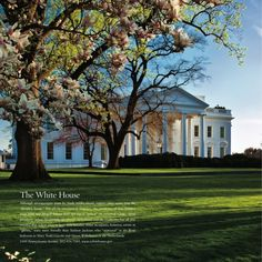 The White House- Washington DC. Didn't look this cool when I visited! No fair! haha