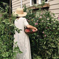 Feature Friday: Kaetlyn Anne of Calico & Twine – Rosalynne Love Gardenias, Living At Home, Slow Living, Gardening Photography, Landscape Photography, Design Jardin, My Secret Garden, Summer Garden, Garden Fun