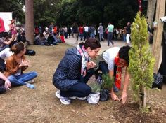 2 june - cleaning and planting trees/flowers in Gezi Park/Taksim/Istanbul/TURKEY