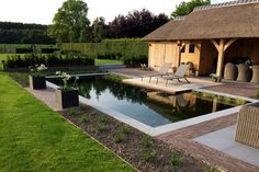 Terrace Garden, Garden Pool, Pond Design, Garden Design, Indoor Pond, Plunge Pool, Dream Pools, Ponds Backyard, Pool Houses