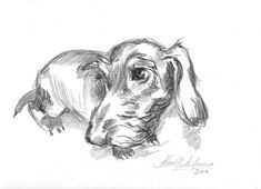Best 25+ Dachshund drawing ideas