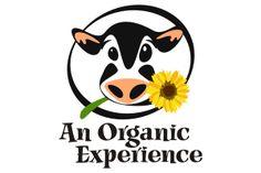 Logo Design for an Australian organic food supplier Cow Logo, Farm Logo, Precious Moments Coloring Pages, Australian Organic, Cow Shed, Cartoon Cow, Organic Logo, Logo Food, Stone Painting