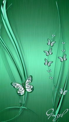 Vert Butterfly Wallpaper, Green Wallpaper, Apple Wallpaper, Butterfly Flowers, Love Wallpaper, Colorful Wallpaper, Phone Screen Wallpaper, Wallpaper Iphone Cute, Cellphone Wallpaper