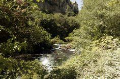 Er is veel groen langs de rivier de Sorgue bij Sorgue-Fontaine-de-Vaucluse Provence, Water, Outdoor, Gripe Water, Outdoors, Outdoor Games, The Great Outdoors, Aix En Provence