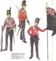 1-Bugler of Sharpsboogers, line batalions, field service marching order, 1813-16 2-Sergeant-major, line batalions parade dress 1812-16 3-Colour-bearer, 5th line batalion parade dress, 1815-16