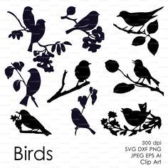 Three birds on the branch (eps, svg, dxf, ai, jpg, png) Vector ClipArt Wall Decor Decal Vinyl Cutting File Silhouette Cameo EasyCutPrintPD • Instant Digital Download included 1 zip file After payment you will get a link for downloading You receive ZIP archive containing the following