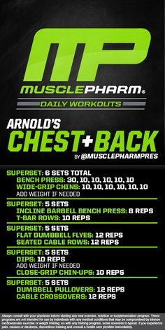 Arnold's Chest and Back