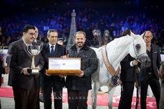 « الزبير» متخصص الأفراس في بطولة العالم.. أربع سنوات متتالية وأربعة ألقاب غالية