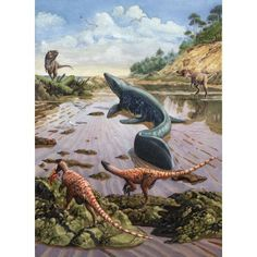 Raptors attack a vulnerable Mosasaurus that remained aground at low tide Canvas Art - Sergey KrasovskiyStocktrek Images x Prehistoric Wildlife, Prehistoric World, Prehistoric Creatures, Fantasy Creatures, Mythical Creatures, Dinosaur Illustration, Illustration Techniques, Dinosaur Art, Dinosaur Crafts