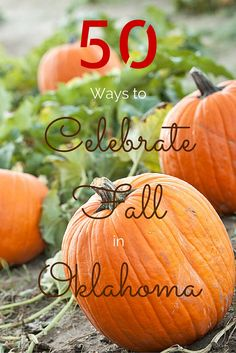 Oklahoma is full of autumn activities including pumpkin patches, haunted houses, hiking and corn mazes.