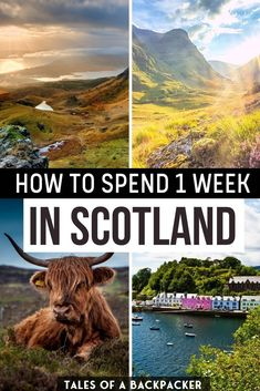 How to Spend 1 Week in Scotland. This is the best Scotland 7 Day Itinerary! How to Spend 7 Days in Scotland. I spent a week in Scotland and this is the 7 day Scotland itinerary I followed, which you can adapt to suit your needs or sign up for a tour like I did! #Scotland #UnitedKingdom #Itinerary | Scotland Travel Guide | One Week in Scotland | Scotland 1 Week itinerary | What to do in Scotland | Where to go in Scotland | Scotland Must Seers | Scotland Travel Guide, Scotland Road Trip, Europe Travel Guide, Ireland Travel, Travel Destinations, Berlin, Cairngorms National Park, Adventure Tours, European Travel
