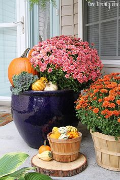 Mums, pumpkins, and gourds, oh my. We've totally fallen for this overflowing front porch display from Two Twenty One.