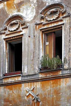Rome and rosemary