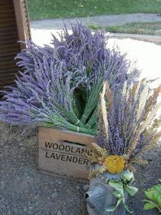 ~*Woodland Lavender soaps, lotions, Fairie Mist, Essential oils, and other lavender products*~