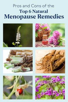 The menopause game has changed.discover the pros and cons of the big 6 herbs that battle the beast. Discover natural relief for menopause symptoms, whatever stage you're in. Natural Health Remedies, Herbal Remedies, Healing Herbs, Natural Healing, Health And Wellness, Health Tips, Women's Health, Alternative Health, Natural Medicine