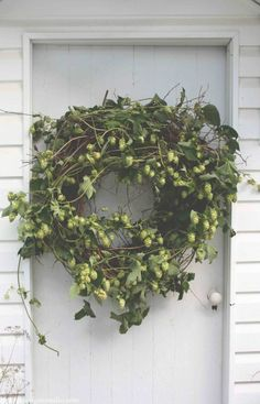 Hops wreath...<3