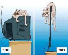 Non ci sono più i televisori di una volta... Fiorella