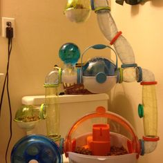 This is an ovo hamster cage (with add-ons) Hamster Habitat, Hamster Toys, Hamsters, Hamster Stuff, Dwarf Hamster Cages, Cool Hamster Cages, Gerbil, Pet Home, Habitats