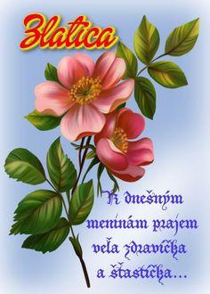 meninové priania Birthday Wishes, Plants, Blog, Wishes For Birthday, Birthday Greetings, Plant, Happy Birthday Wishes, Planting, Planets
