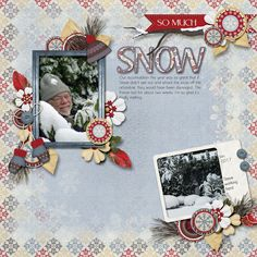Snow Much Snow