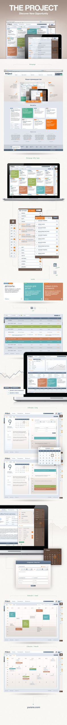 Web interface design for advertising research system by Yuriy Nagorniy