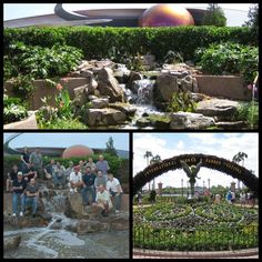 Our team of Pro. Pond Builders - all of us are CAC's (certified Aquascape contractors) built this beautiful Water Garden in Epcot center for the International Flower & Garden Festival.