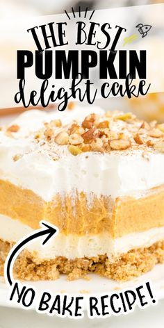 Instead of pumpkin pie this fall (or Thanksgiving!), try this easy pumpkin delight dessert recipe instead! A homemade pecan and graham cracker mix forms a delicious crust that is topped with three layers of light and fluffy filling -- including cream cheese, pumpkin, pudding and Cool Whip. Pumpkin Lasagna, Pumpkin Pie Mix, Pumpkin Pudding, Pumpkin Pie Recipes, Baked Pumpkin, Pumpkin Bread, Cream Cheese Pumpkin Pie, Pumpkin Trifle, Homemade Pumpkin Pie