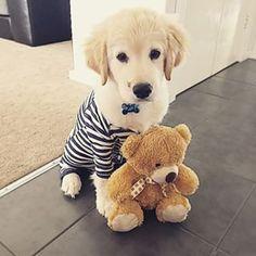 Rupert ♥